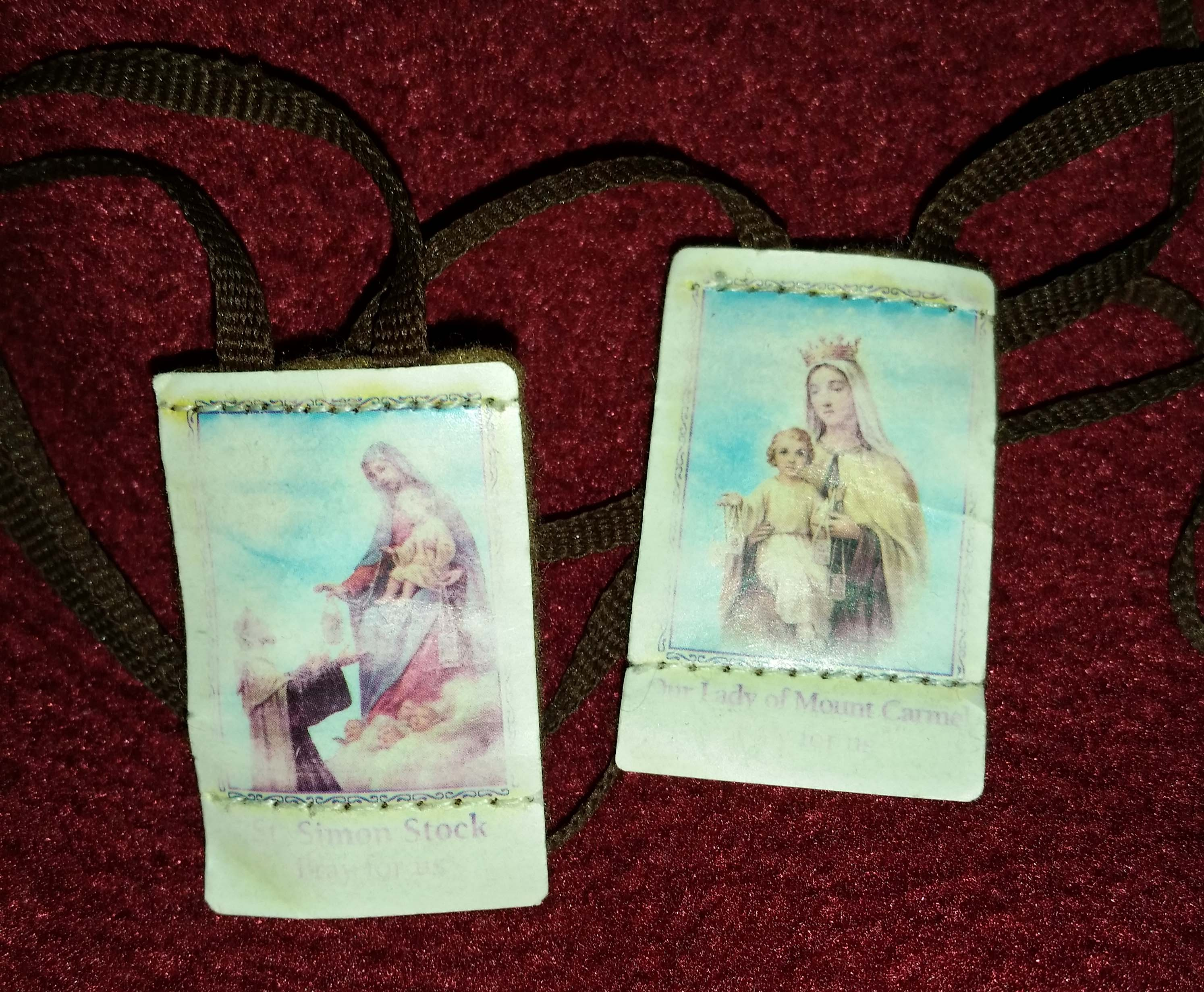 What is the scapular